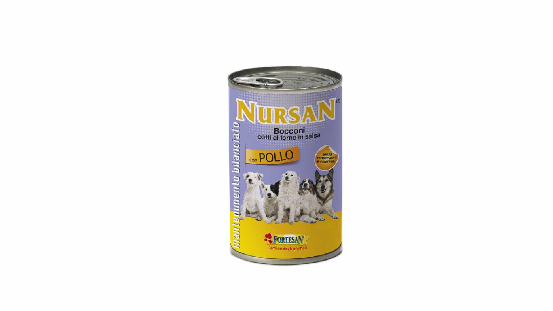 immagine in evidenza della pagina Nursan dog bocconi pollo