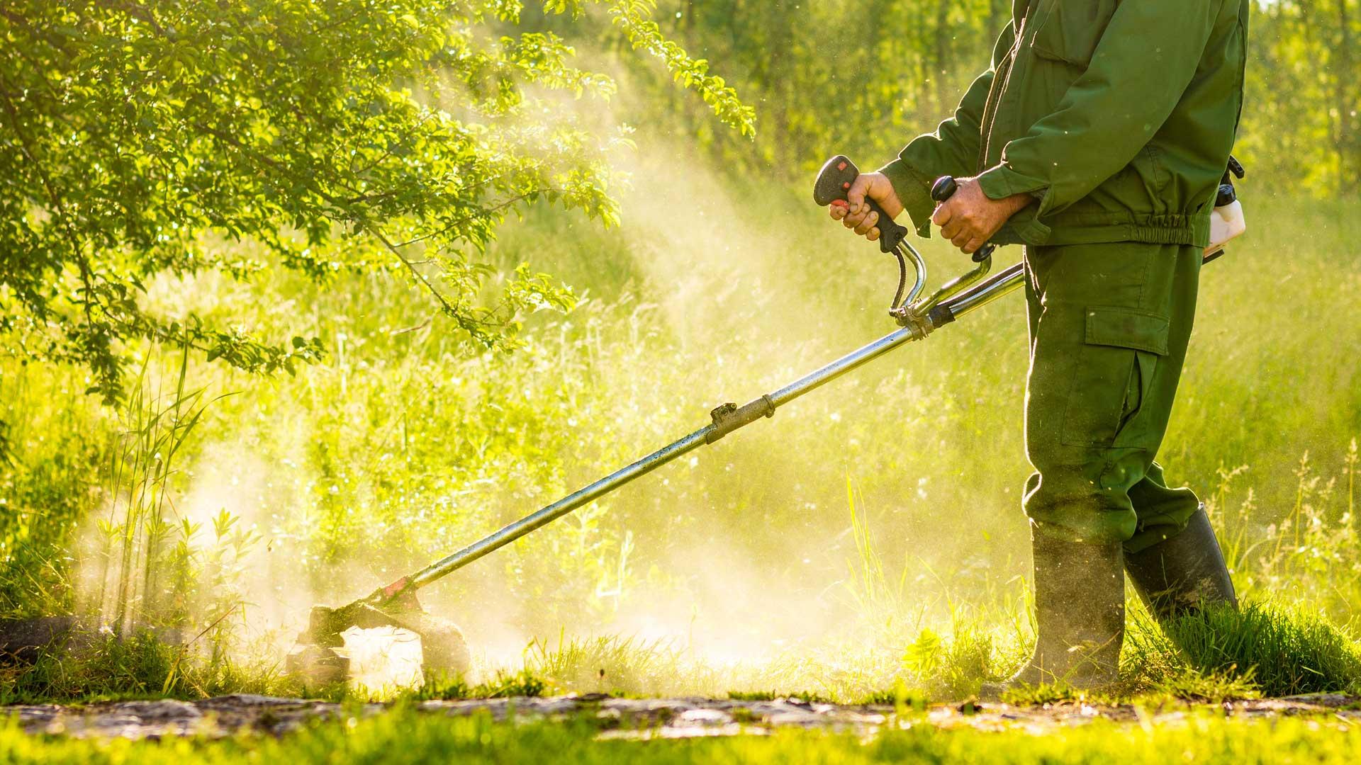 immagine rappresentativa del reparto Giardinaggio del brico ok corigliano