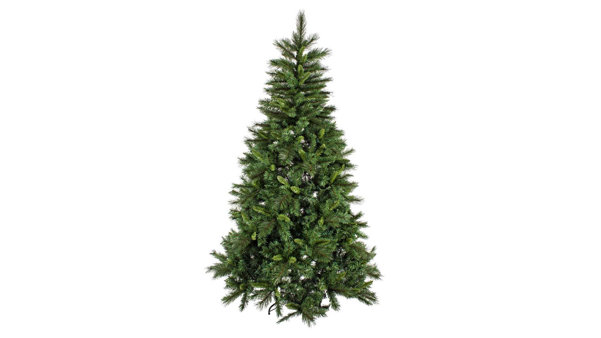 immagine in evidenza della pagina Albero di Natale Fremont
