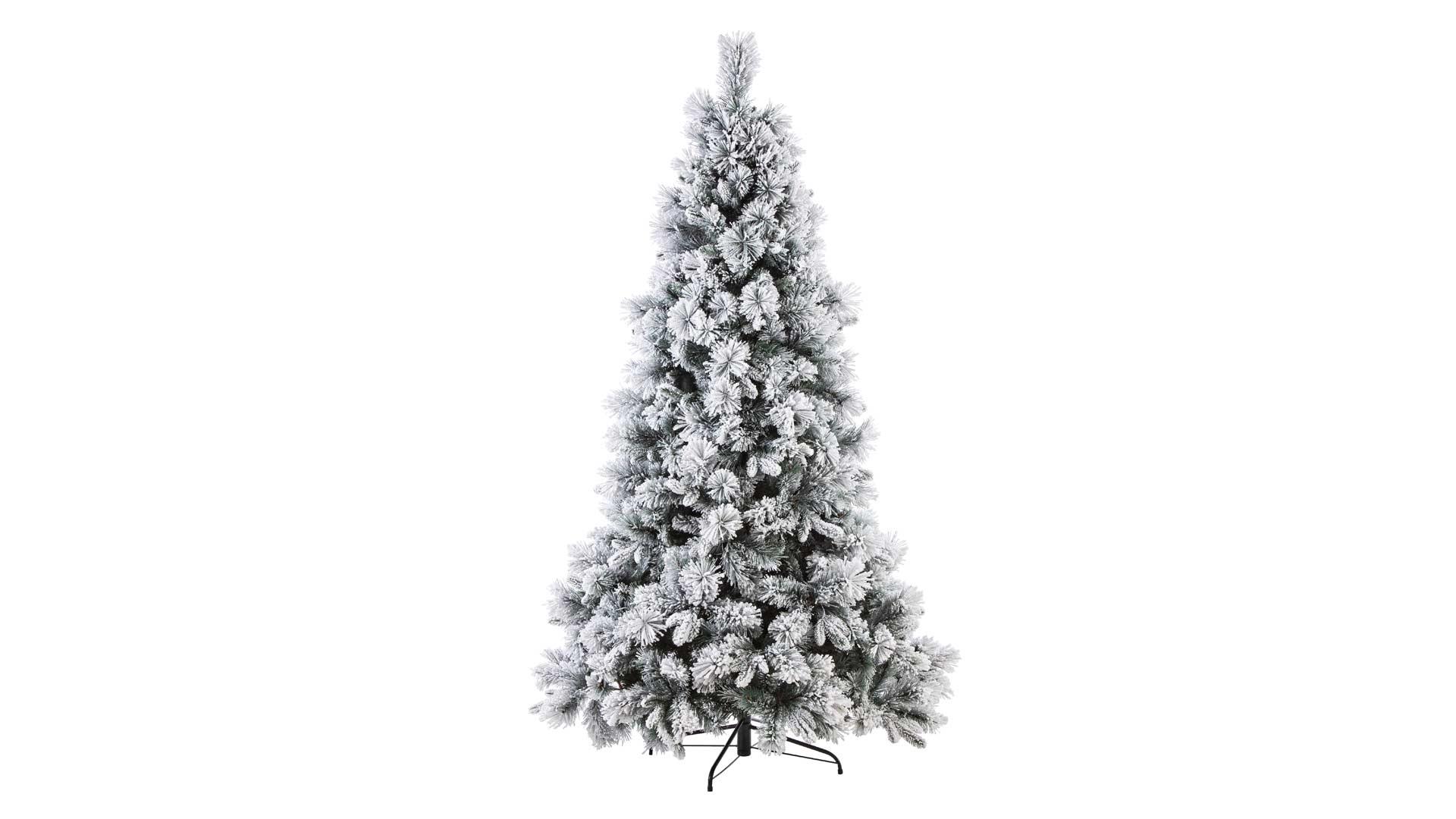 immagine in evidenza della pagina Albero di Natale Garlenda