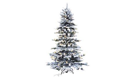 immagine del prodotto Albero di Natale Oregon