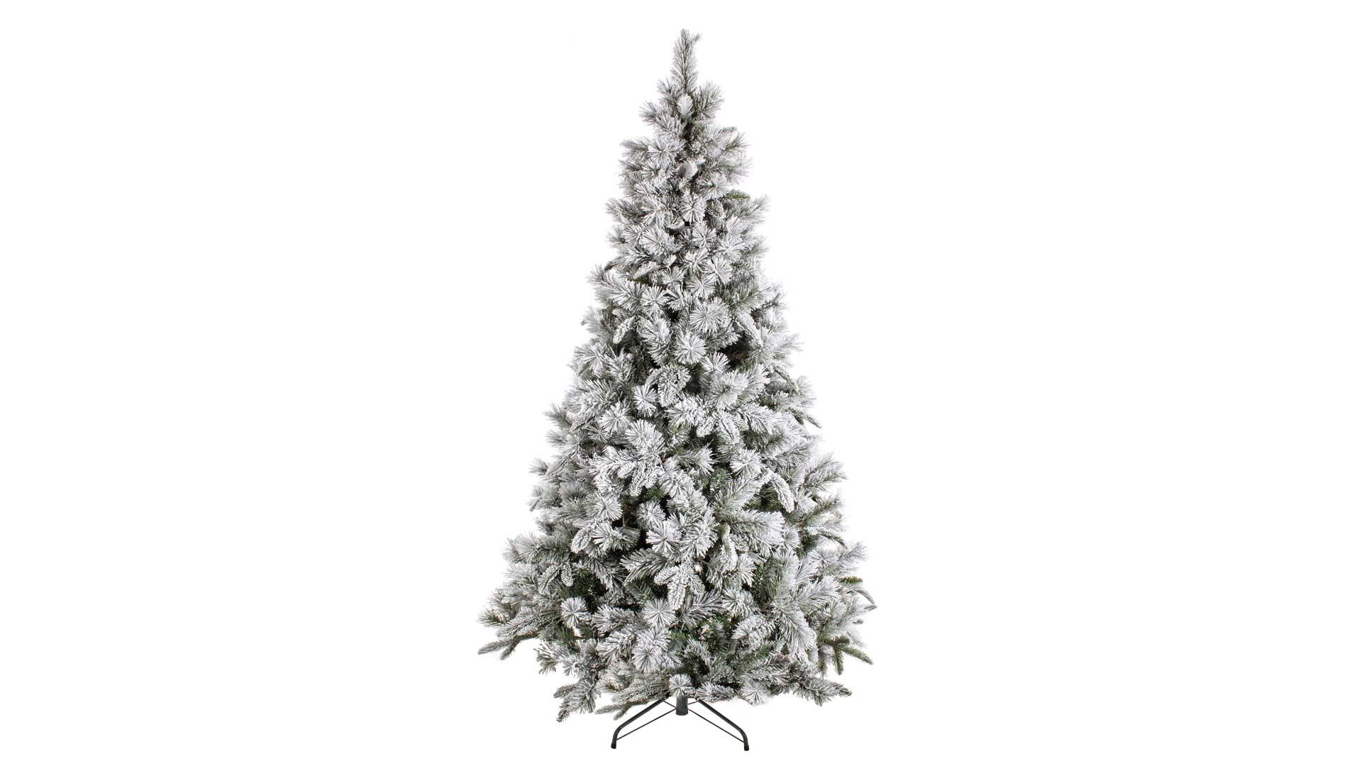 immagine in evidenza della pagina Albero di Natale Pusteria