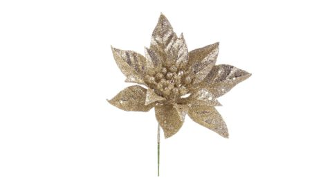 immagine del prodotto Pick Poinsettia champagne